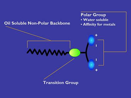 polarbonding